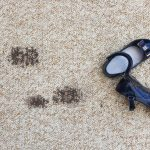 Dirty carpet? Here's how to fix it!